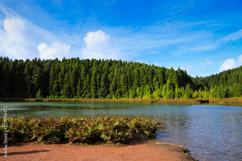 Beautiful Lake surrounded by trees. Azores islands,