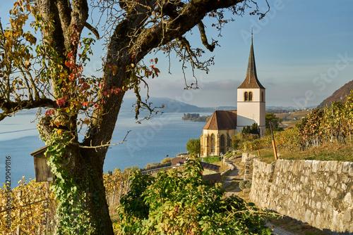 Fotografie, Obraz  Ligerz am Bielersee