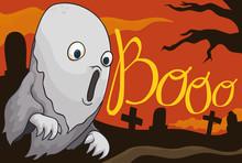 Ghost Howling In A Spooky Grav...