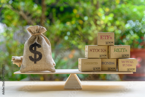 Portfolio management and asset allocation concept : Dollar bag, financial products on balance scale e Canvas Print
