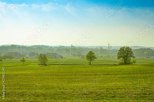 Garden Poster Ass Dorf hinter grüner Wiese und vor blauen Himmel (Ezelsdorf, Mittelfranken)