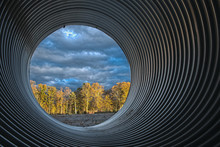 Culvert With Sunlit Woods