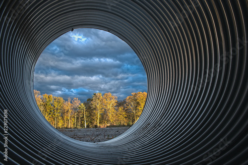 Fotografia, Obraz  culvert with sunlit woods