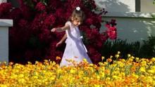 Sweet Little Girl In A Dress P...