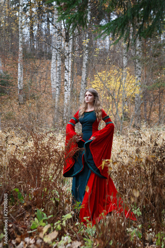 The girl the sorceress in a medieval dress on the field in the fall.