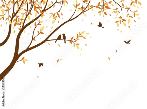 Autumn season with falling leaves with bird for wallpaper sticker Canvas Print