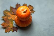 Two Orange Pumpkins. Colorful Maple Leaves On Blue Background. Autumn Composition. Postcard. Decor