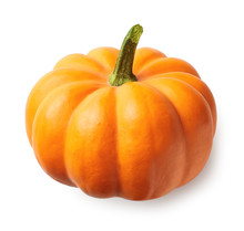 Fresh Orange Pumpkin Isolated ...