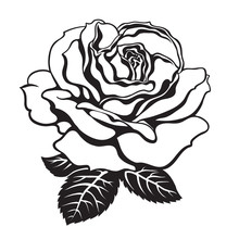 Black And White Rose Icon With...