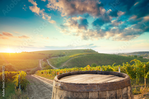 Red wine with barrel on vineyard in green Tuscany, Italy Poster Mural XXL