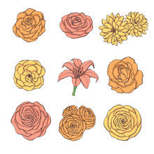Hand Drawn Vector Set Of Rose, Lily, Peony And Chrysanthemum Flowers In Yellow, Orange And Pink Colors Isolated On The White Background. Vintage Floral Elements.