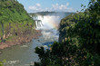 Iguazu falls and Atlantic rainforest in sunlight, Misiones, Argentina, South America