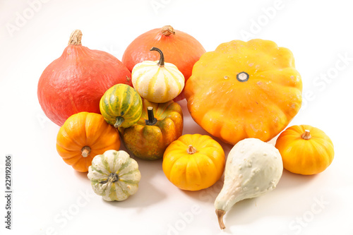 assorted various pumpkin