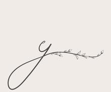 Vector Hand Drawn Floral Y Monogram And Logo