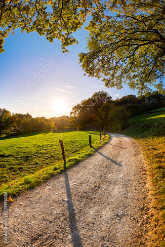 Fototapeta Autumn landscape at sunset with a path beside a meadow obraz