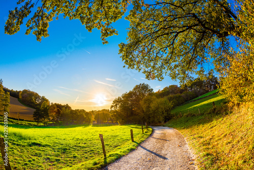Fototapeta Jesień krajobraz przy zmierzchem z ścieżką obok łąki