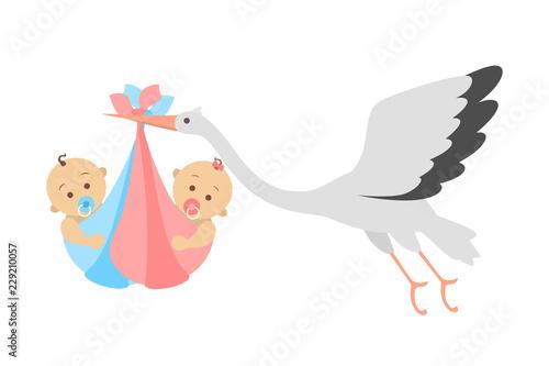 Obraz na plátně White stork flying with a newborn baby twins