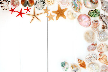 Fototapeta Seashell background border on rustic white wood. Top view