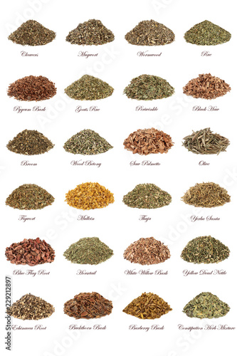 Photo  Herbs used in natural herbal medicine with leaves, flowers, roots and bark isolated on white background with titles