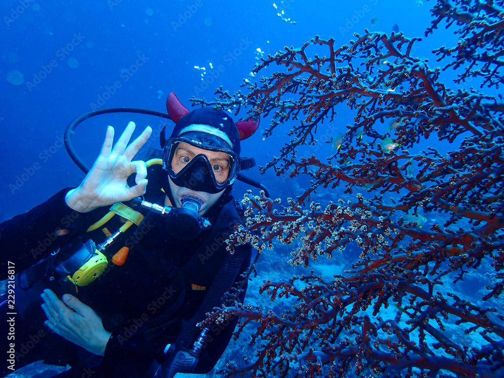 Fototapeta plongée sous marine