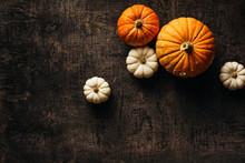 Pumpkins On A Dark Wooden Background