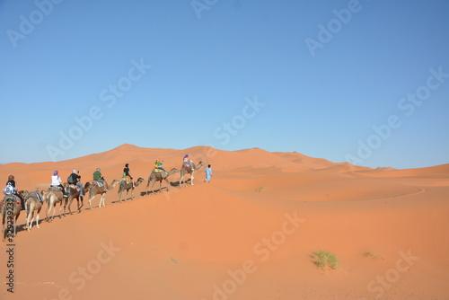 Fotografering  Deserto