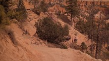 A Group Of People Riding A Horse In Mountains. Tourist Horseback Riding Nature Tour.