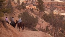 A Group Of People Riding Horses In A National Park Trail.
