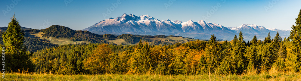 Fototapety, obrazy: Morning panorama of snowy Tatra Mountains over colorful autumn forest, Poland