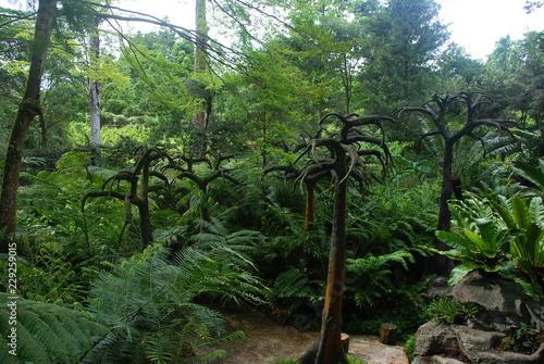 Αφίσα  Flora in Botanic garden of Singapore, the UNESCO world heritage site