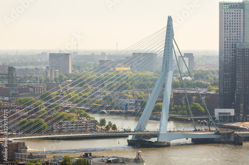 Poster Rotterdam aerial view of the Erasmus bridge on the river Nieuwe Maas in the center of Rotterdam in the Netherlands Holland