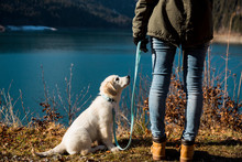 Woman With Her Dog Outdoor