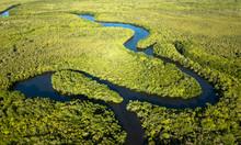 Daintree National Park, Queensland. Australia