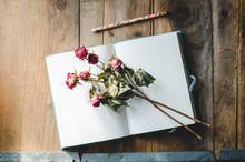 Open Journal With Dried Roses