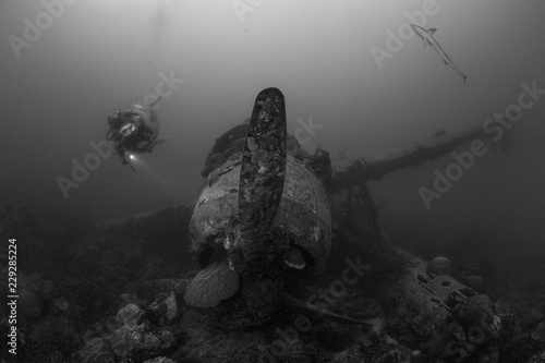 Spoed Foto op Canvas Koraalriffen A female scuba diver exploring wreck of Japanese fighter plane undersea
