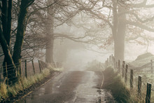 Small Country Road In Fog At Sunrise. Rydal, Cumbria, UK.