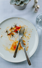 The Remains Of A Meal Involvin...
