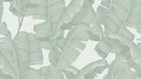 Kwiatowy wzór bez szwu, zielone liście bananowca na jasnozielonym tle, pastelowy motyw vintage - 229291442