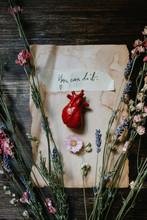 Little Human Heart Over A Writ...