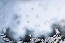 Beautiful Frost Macro