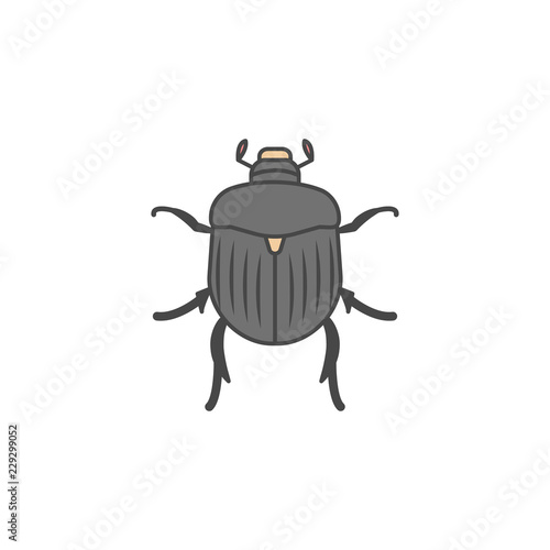 Canvas Chafer colored outline icon