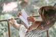 Leinwandbild Motiv Woman in summer dress lies in the hammock in a garden and reads the book