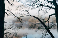 Boat House Through Trees In Fog. Rydal Water, Cumbria, UK.