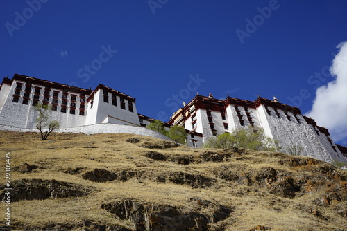 Canvas Print Potala palace in Tibet