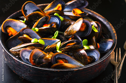 Delicious mussels with fresh herbs in a pot Canvas Print