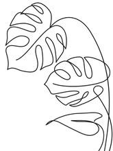 Monstera Tropical Leaf