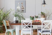 Real Photo Of Plants In A Rustical Dining Room Interior With A Table, Chairs, Painting With Ducks
