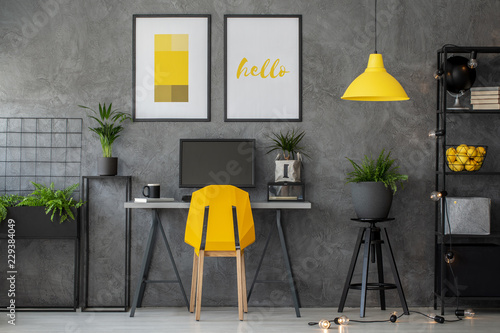 Obraz Stylish yellow and grey home office with industrial furniture and urban jungle, real photo with posters on concrete wall - fototapety do salonu