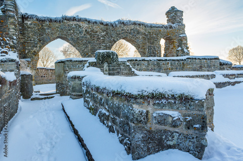Fotografie, Obraz  Old monastery ruins with snow