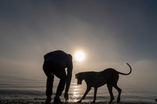 Silhouetted Man And Dog At The Beach In Heavy Fog Searching The Rocks.